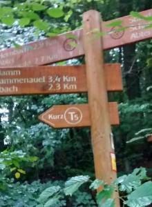 Termine Coaching, Yoga und Wandern in der Eifel